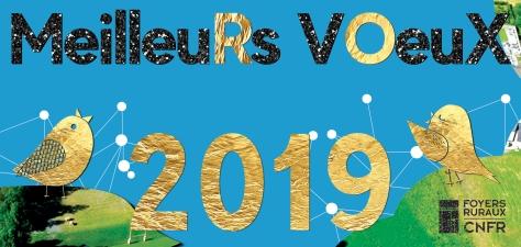 carte 2019 voeux cnfr vierge